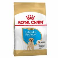 Pienso Royal Canin Labrador Retriever Junior